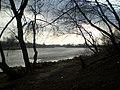 Рака Мухавец - panoramio.jpg
