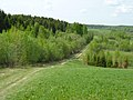 Спуск к полям - panoramio.jpg