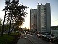 Улица Бутлерова - panoramio (1).jpg