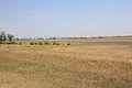 Южная окраина Беляевки - panoramio.jpg