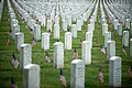 """""""Flags in"""" with The Old Guard in Arlington National Cemetery (17763577110).jpg"""
