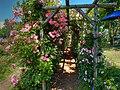 ロイズ ローズガーデン(Royce' Confect Rose Garden) - panoramio (5).jpg