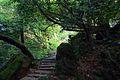 三峽天南寺 - panoramio (5).jpg