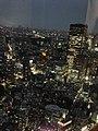 六本木ヒルズ大展望台 東京シティビュー - panoramio (34).jpg