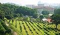 华南农业大学,园艺学院果园和林学院树木园 - panoramio.jpg