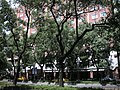台北市建築物 - panoramio - Tianmu peter (21).jpg