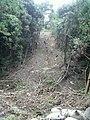 土砂崩れ - panoramio.jpg