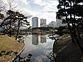 浜離宮恩賜庭園 - panoramio (6).jpg