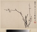清 李方膺 墨梅圖 冊-Album of Blossoming Plum MET DP211117.jpg