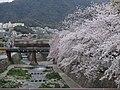 都賀川・甲橋からの風景 - panoramio.jpg