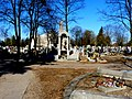 - Cmentarz Nowofarny - panoramio (2).jpg