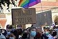 02020 0110 (2) Equality March 2020 in Kraków.jpg