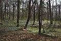 05-230-5012, Немирівський парк.jpg