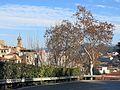 068 Monistrol de Montserrat des de la carretera BP-1121, al fons el campanar de Sant Pere.jpg