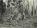 071 Виды Тайги Шалаш чернорабочих в Тайге (cropped).jpg
