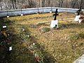 07 Cmentarze pod Bochnią nr 338 Nieprześnia - luty 2014 (66).JPG