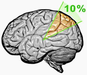 "Ten percent of the brain myth - ""10% of the brain"" myth"