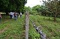 12, Amazonas, Venezuela - panoramio (2).jpg