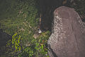 170-Vale do Capao 2015 2048px 20.jpg