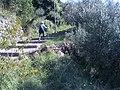 19014 Framura, Province of La Spezia, Italy - panoramio (15).jpg