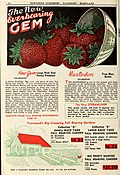1946 catalog of fruits (1946) (16483163110).jpg