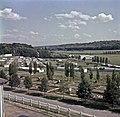 1960 Parc à taureaux et aviculture du CNRZ Cliché Jean-Joseph weber-2-1.jpg