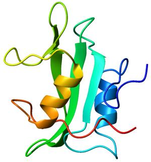 SH2 domain - Image: 1lkk A SH2 domain