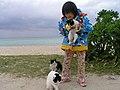 2006-01-23 Kondoi Beach Taketomi-Island,Okinawa コンドイ浜(沖縄県八重山郡竹富町竹富)P1233114.jpg