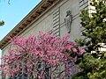 2006-05-03-Palais de Rumine-Lausanne-façades sud.jpg