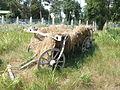 2006 0814Caruta Romania20060270.JPG