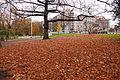 20101111 liege192 avroy.JPG