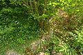 2012-06-02 10-11-10-fort-miotte.jpg