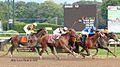 2012 Travers Stakes - Saratoga, N.Y. (7875933398).jpg