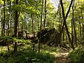 2013-05-06 15 14 06 Glacial erratics along the Ghost Lake Trail in Jenny Jump State Forest.jpg
