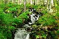 2014-08-28 17-03-41 cascade.jpg