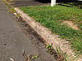 2014-08-29 15 46 03 Old curb likely dating to the 1950s along Terrace Boulevard in Ewing, New Jersey.JPG
