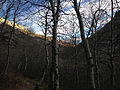 2014-11-11 15 41 01 Bare Aspens along the Changing Canyon Trail in Lamoille Canyon, Nevada.JPG