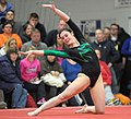 2015 District Championships West Geauga 24.jpg