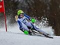 2018 STM Austria Skibob Hochficht HARTL Claudia-2772.jpg