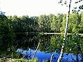 2175. Lake Karasyovoe in the park Sosnovka.jpg