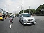 2256Elpidio Quirino Avenue Airport Road NAIA Road 34.jpg