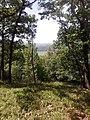 252 29 Dobřichovice, Czech Republic - panoramio.jpg