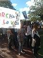 2da Marcha por la Vida argentina 5.jpg