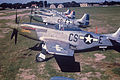 359th Fighter Group - P-51D Mustangs.jpg