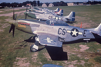 359th Fighter Group - P-51 Mustangs of the 359th Fighter Group