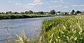 48163439231 Neman river as seen in Stolbcy, Belarus June 2019.jpg