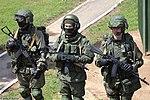 4thTankDivisionOpenDay17p2-07.jpg