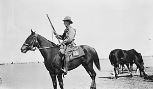 6th Light Horse Regiment (Australia) - The 6th Light Horse in Palestine 1916