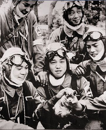 26 May 1945. Corporal Yukio Araki, holding a puppy, with four other pilots of the 72nd Shinbu Squadron at Bansei, Kagoshima. Araki died the following day, at the age of 17, in a suicide attack on ships near Okinawa. 72nd Shinbu 1945 Kamikaze.jpg