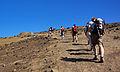 Açores 2010-07-18 (5015509302).jpg